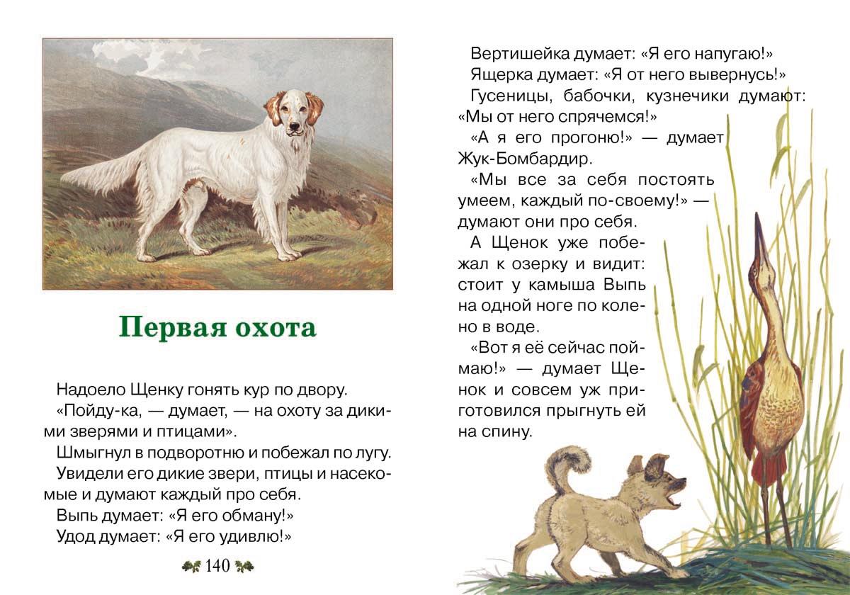 распечатать рассказы о животных картинки отличное упражнение