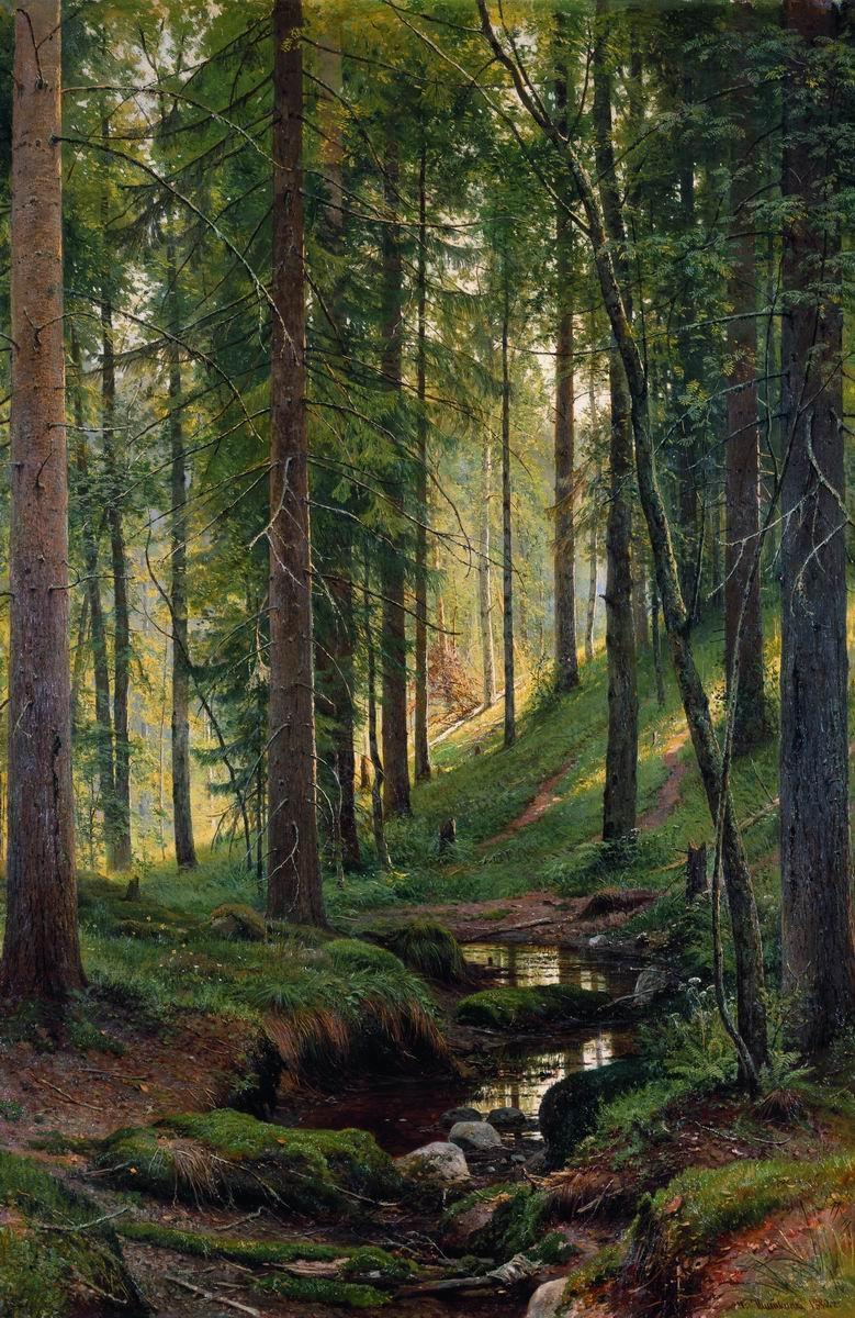 Осенний дождь в лесу картинки