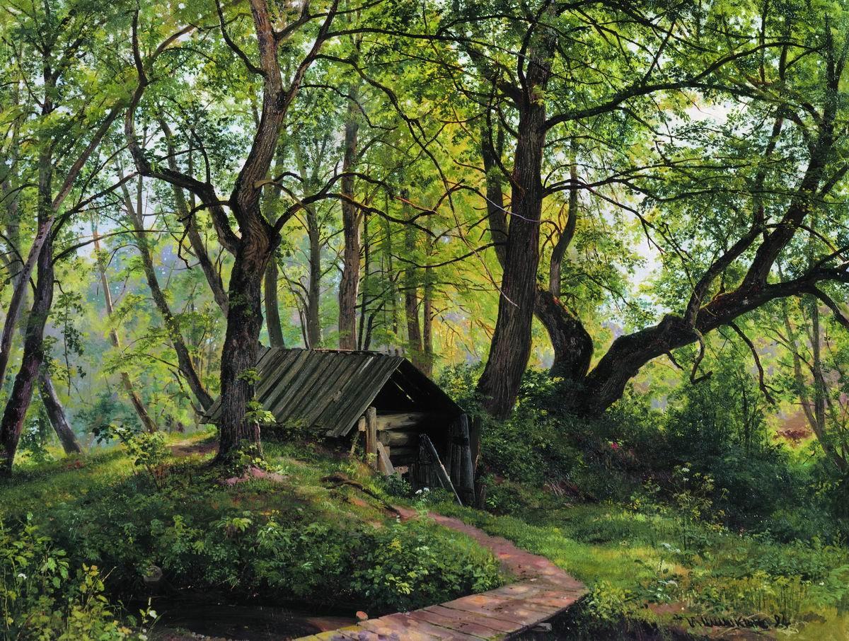 1894 картина художника шишкина старые